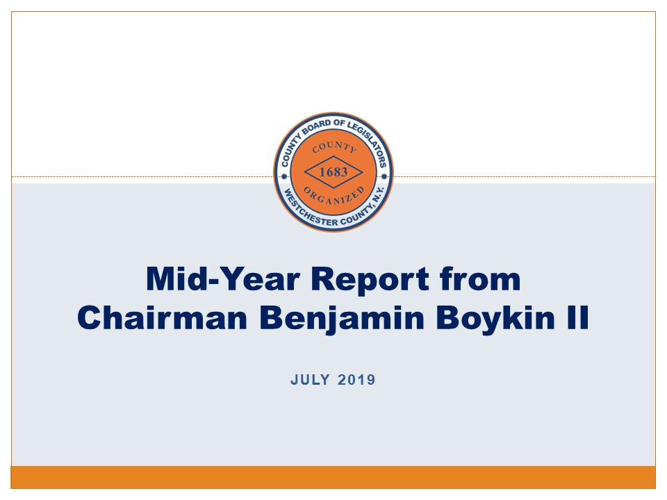 2019 Mid-Term Report